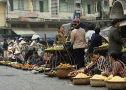 Hanoi Study Tour