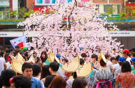 The Reintroduction of Japan Sakura Festival in Hanoi