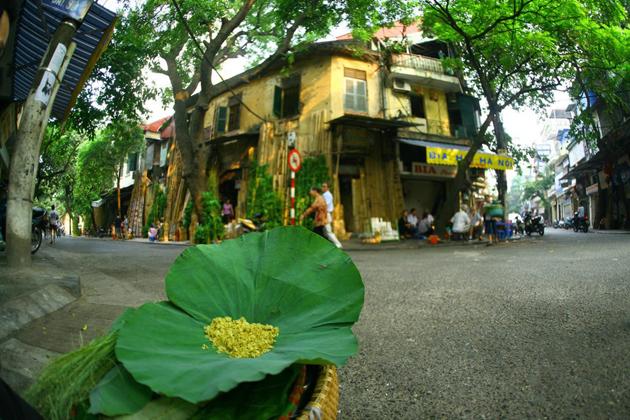 Hanoi street in Autumn