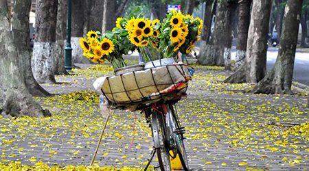 5 Romantic Streets in Autumn of Hanoi